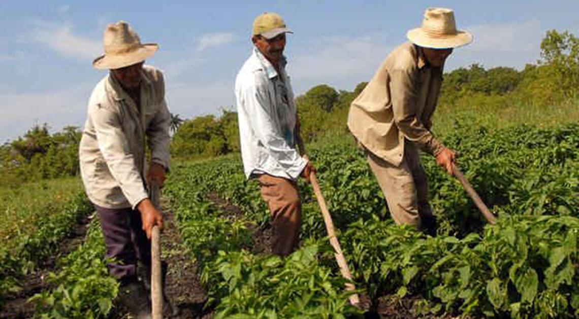 Día del Trabajador Rural