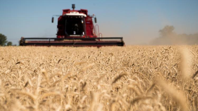 Prevención a días de la cosecha
