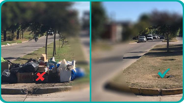 Multas por arrojar basura